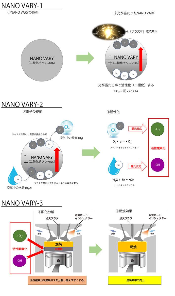 nanovary_zukai.jpg